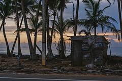 Mystery shack (runovv) Tags: srilanka evening india trees tree wood nature palm sky dark darkness sea seascape seaside sunset skyscape clouds beach warm sun