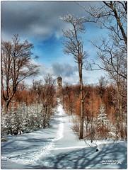 Der Hochwaldturm