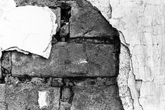 AA030 (Terry Christian Photo) Tags: nikon nikonf2 nikonf2photomic photomic kodak trix trix400 hc110 neworleans stlouiscemetery3 cemetery grave vault tomb ruin stone marble