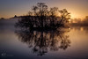 Sunrise (4orty7even) Tags: britain british december england english europe richmondpark surrey uk unitedkingdom frost mist winter