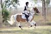 Artistic License (Tackshots) Tags: tamronsp70200f28divcusd eventing crosscountry pony horse riding groveland florida equestrian horsetrials threelakes