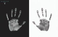 PALMISTRY (XAEVO DELUXE) Tags: xaevo deluxe xaevodeluxe jason crux jasoncrux astoriafibonacci bw black white blackandwhite light dust man depthoffield hand hands finger fingers print background fingerprint handprint monochrome