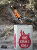 Hot coals (ponzü) Tags: coronadelmar beach boy kid orange redhair california lrexportviajf