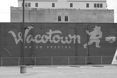 Oh so special (dangr.dave) Tags: mclennancounty waco tx texas downtown historic architecture wacotown town mural bear baylor