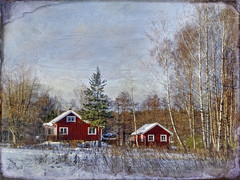 Rural idyll. (Bessula) Tags: bessula nature lanscape country rural idyll trees house cottage red texture sweden scenery tistheseason coth