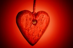 Heart (Explored 13/2/17) (frankvanroon) Tags: macromondays heart wood red valentine valentinesday smileonsunday macro mm hmm lovelyhearts macrounlimited