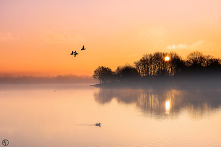 Flight at misty sunrise...