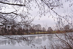 Urban lake (Human Torch) Tags: trees winter lake reflection nature water mrjackfrost tag3 taggedout germany ilovenature deutschland tag2 tag1 brandenburg 1on1 humantorch canonpowershota520