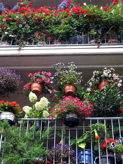 Middelburg: flower balcony