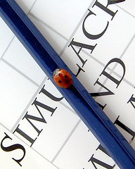 Simulacrum (Lynn Morag) Tags: pencil book interestingness top20wings squares letters philosophy 100v10f frenchpoetry womenonly lynn spots ladybird ladybug top20favourites redandblue dots crawling oneyear lynnmorag baudrillard simulacrum jeanbaudrillard curdled 200v20f interestingness7 creamme simulacraandsimulation milked wowm i500 outstandingshots abigfave 99wordsclever cleverladybird outstandingshot allrightsreserved