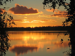 Lokki (Vaeltaja) Tags: sunset summer sky lake nature water yellow clouds wow suomi finland fantastic bravo searchthebest seagull vesi kes luonto pilvet auringonlasku lokki maisemat keltainen kuivasjrvi topphotoblog fivestarsgallery specsky diamondclassphotographer flickrdiamond