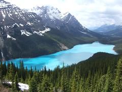 Peyto Lake (ebygomm) Tags: usa lake canada roadtrip banff top20landscape top20waterpix peytolake usaroadtrip flickrscorer19