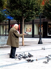 el encantador de palomas (Caro Spark) Tags: palomas pigeons city man birds people animals gentelatercerajuventud