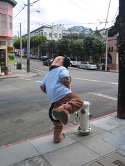 Ummm...Dogster, what are you doing? (freal) Tags: dogster potreo hill peeing fire hydrant
