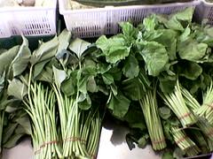Leafy veggies for protein