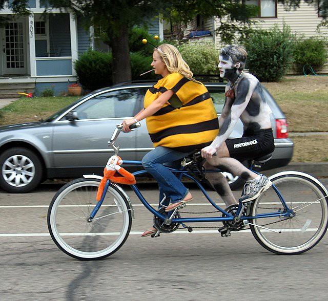 Thumb Una abeja gorda y una vaca flaca en bicicleta