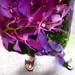 Hier j'ai décidé de m'habiller avec des fleurs