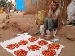Oromo girl with tomatoes (CharlesFred) Tags: africa countryside african somali dailylife ethiopia afrique harar ogaden babile