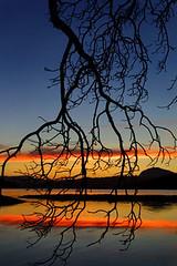 Skagit Bay sunset (Belltown) Tags: sunset 15fav nature wow landscape outdoors interestingness fantastic awesome pacificnorthwest pugetsound interestingness298 i500 explore3oct05 skagitbay nearlaconner