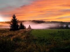 Sunrise (digikuva) Tags: sky orange mist topv2222 sunrise wow finland landscape ilovenature interestingness bravo scenery europe 2000 savedbythedeletemegroup top20sunrisesunset heiluht saveme10 topc100 topf100 hyvink 100f kytj september42005 fieldf interestingness10october2005 sunriseseptember42005 world100f hl84378
