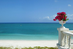Palms Oceanview (CourtneyMay) Tags: ocean beach palms hotel turksandcaicos luxuryhotel luxuryhotels