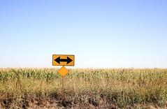 Corn (Thomas Hawk) Tags: road field sign corn front arrow