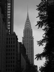 Chrysler Building New York City (Erik Holmberg) Tags: new york city nyc newyorkcity 2002 building leaves chrysler