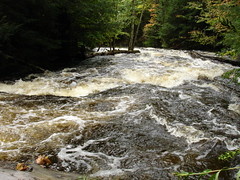 Flooding River (mikefurgang) Tags: hardrain tabortonroad river forest 214 backyard
