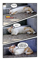 comic 01 (hamapenguin) Tags: cat comic kamakura comiclife neko  effect straycat