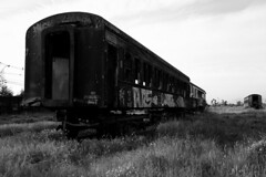 the last train (Rodrigo Adonis) Tags: chile bw abandoned topf25 composition last train wow photography interestingness photographer monochromatic fotgrafo composicion rodrigoadonis