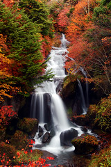 Ryuzu no taki (waterfalls) - water japan fall waterfall autumn seasons color ryuzu leaves red waterblur nikko