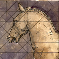 Horse's Head (detail) (ART NAHPRO) Tags: venice horse pen ink drawing nahpro jackson equus horseheaddrawing oakgallwash