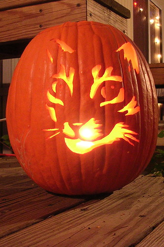 Dogs and Dames − 13 Cat Pumpkin-Carving Ideas for Halloween