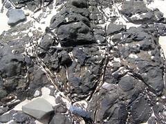 #047 lava texture (Nemo's great uncle) Tags: geotagged lava hawaii  oahu  hi mokuluaislands mokulua geo:lat=213892855 geo:lon=15770235530000002