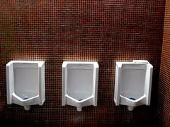 three (stungeye) Tags: toilet urinal winnipeg wonder stungeye choice decision