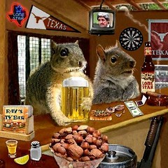 The Bar Part I (Terry_Lea) Tags: squirrel squirrels tbas