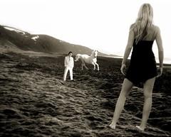 etymological commentary ([phil h]) Tags: 2005 15fav horse woman white black beach me topf25 topc25 topv111 sepia 1025fav 510fav photoshop self fun iceland topv555 topv333 perfect flickr december 500plus phil topv1111 topv999 topv444 topv222 topv777 silliness topv666 philip philippe contrapposto whitehorse topv888 rebekka etymology philh