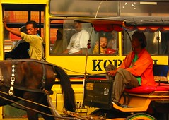 lewat (Farl) Tags: street horse bus window colors indonesia child gutentag culture transportation portal yogyakarta jogjakarta fleeting stares jave gazes centraljava jawatengah jogyakarta jogya