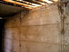 potting shed (gilesbooth) Tags: decay allotment cobwebs no1 pottingshed no2 no3