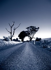 the road to ...... nowhere (macca) Tags: road trees alone quiet nowhere australia journey duotone distance gravel bluetone