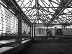 grid (M A R C O_o) Tags: park blackandwhite parco white black architecture concrete grid graffiti grigio decay urbandecay area urbana peep grayscale cemento bianco nero architettura biancoenero udine griglia rizzi degradation degrado