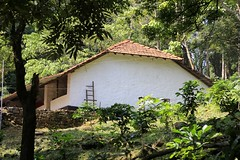 The building accommdation Dare Nature Wayanad