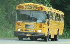 Brewster CSD #217 (ThoseGuys119) Tags: schoolbus icce icre brewsterny icfe bluebirdallamerican leonardbussales brewstercsd
