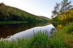 Douce quitude matinale (Excalibur67) Tags: forest landscape nikon sigma paysage reflexion reflets eaux tangs d7100 vosgesdunord forts ex1020f456dchsm