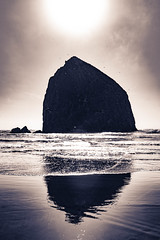 _DSC4468 (ReeceMur) Tags: nikon d7200 edit blackandwhite hintofcolor art water ocean rock monolith nikkor