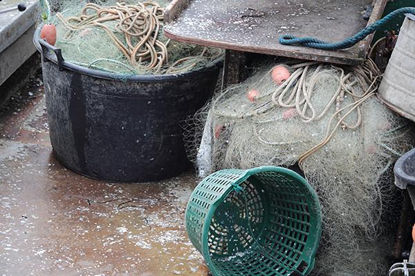 fischschuppen still life after the catch dieter drescher tags stilllife green grey stillleben basket funktion