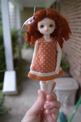 Pocket Fairy Sugar - Orange Betty (Chassy Cat) Tags: white skin stock sugar special fairy tiny bjd pocket pf pocketfairy orangebetty