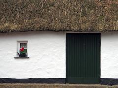 La chaumière (LILI 296...) Tags: fleur maison irlande chaume chaumière bunrattyfolkpark