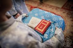 Литургия в Софийском соборе 540