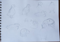 20161209_105856_Disegni di Silvana__D5C1287 (Silvana Grimaldi) Tags: art arte dipinti disegni disegno drawings painting paintings pittura quadri schizzi sketches bysilvanagrimaldi